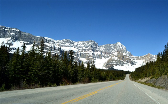 A typical view driving the Icefields Parkway