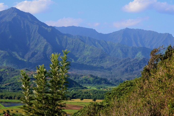 Along the road from Princeville to Hanalei