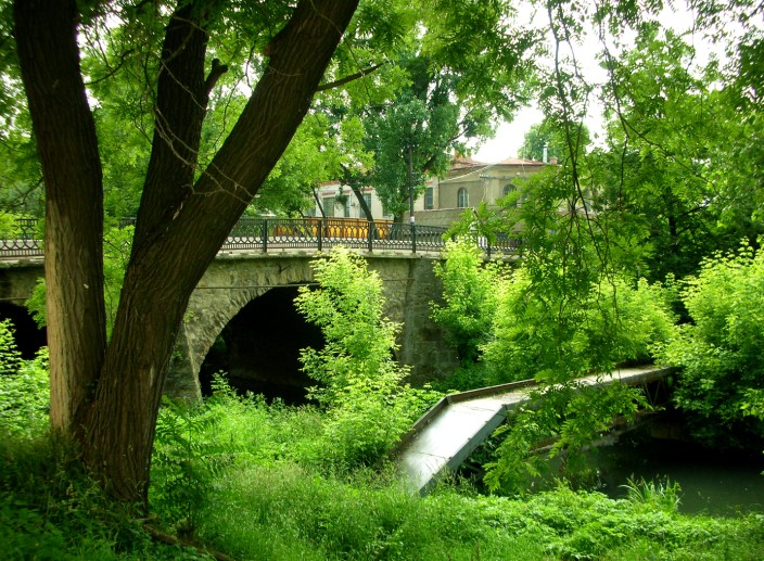 Bridge and trees in the town of Berehove, southwestern Ukraine