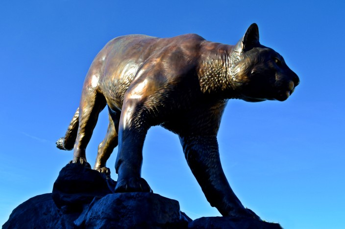 Butch, the Cougar, outside Martin Stadium