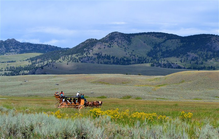 Here's one way to beat the traffic in Yellowstone