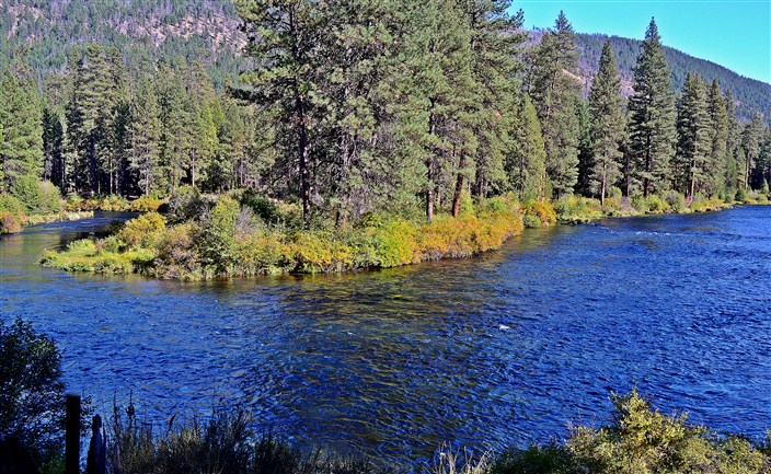 Hiking along the banks of the Metolius River