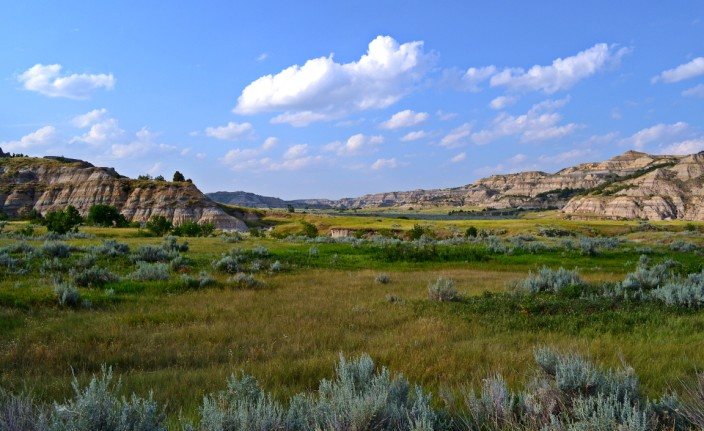 Inside the North Unit of Theodore Roosevelt National Park (TRNP)