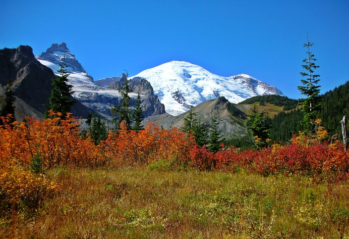 On the Summerland trail - Mt. Rainier in autumn