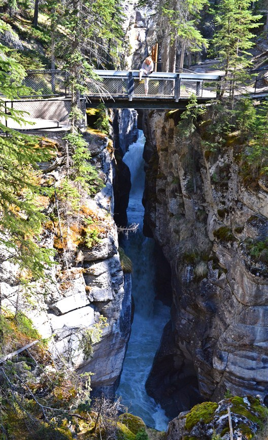 One of the six bridges crossing the Maligne River box canyon