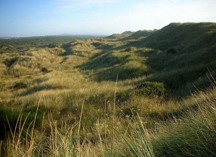 Oregon Dunes National Recreation Site
