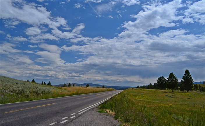 The rarest sight in Yellowstone - an empty road!