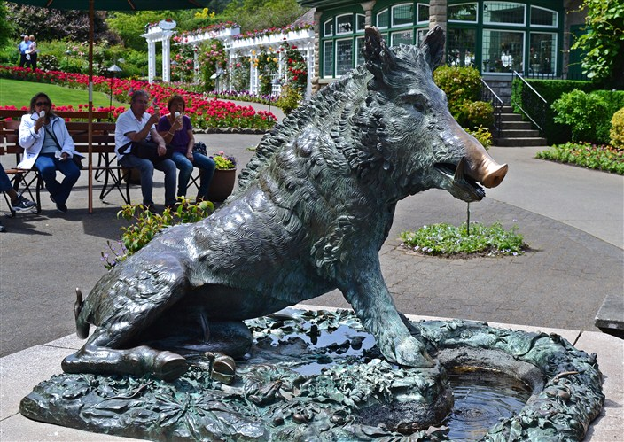This little piggy went to...Butchart Gardens