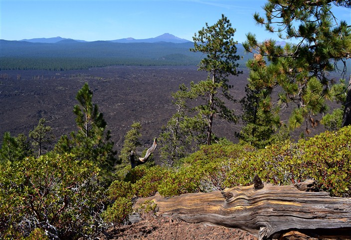 View from atop Lava Butte