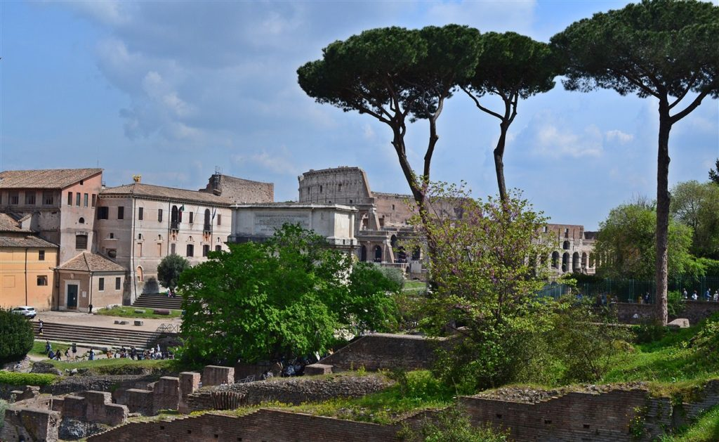 Colosseum in background behind the trees